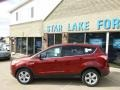 2014 Sunset Ford Escape SE 1.6L EcoBoost 4WD  photo #7