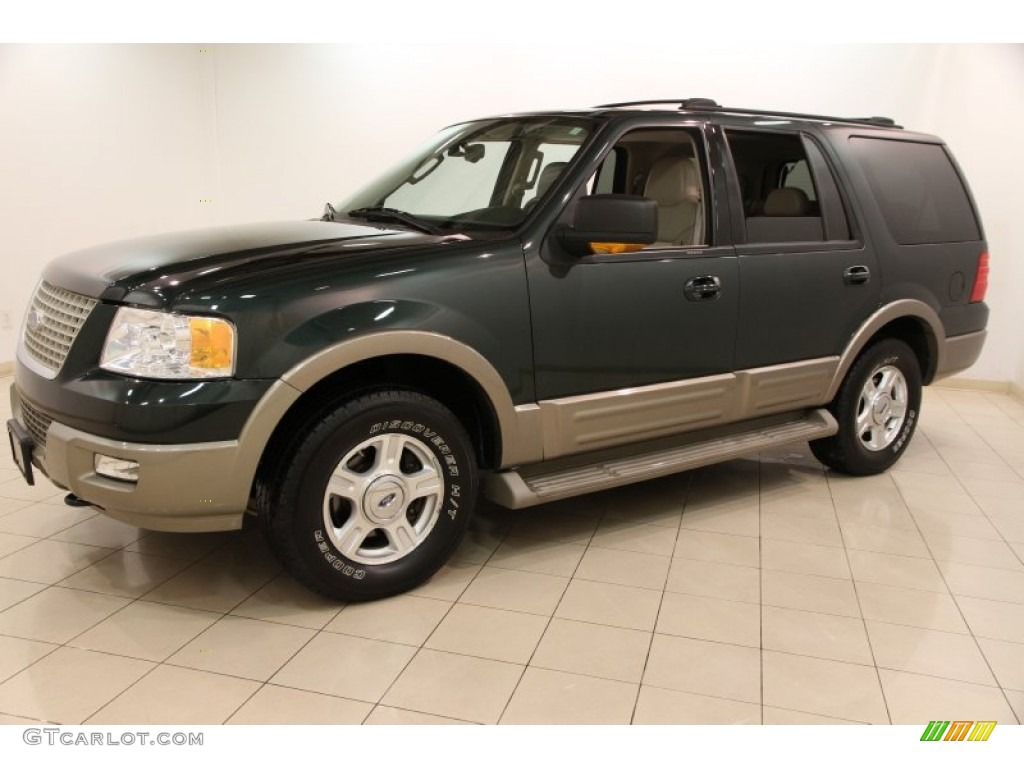 2004 ford expedition eddie bauer 4x4 exterior photos. Black Bedroom Furniture Sets. Home Design Ideas