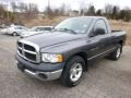 2004 Graphite Metallic Dodge Ram 1500 ST Regular Cab #91893432