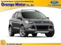 2014 Sterling Gray Ford Escape SE 1.6L EcoBoost 4WD  photo #1