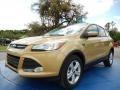 2014 Karat Gold Ford Escape SE 2.0L EcoBoost  photo #1