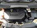 2014 Karat Gold Ford Escape SE 2.0L EcoBoost  photo #11