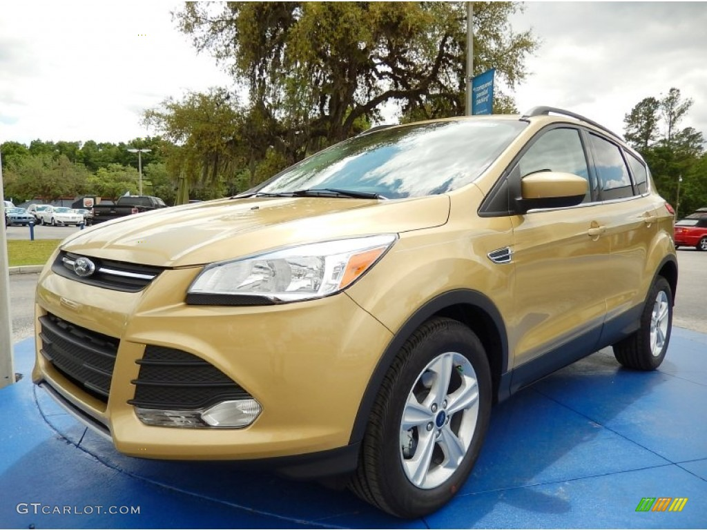 2014 Escape SE 1.6L EcoBoost - Karat Gold / Medium Light Stone photo #1