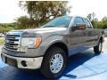 Sterling Grey 2014 Ford F150 Gallery