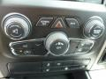 Canyon Brown/Light Frost Beige Controls Photo for 2014 Ram 1500 #92873834