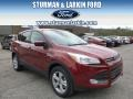 2014 Sunset Ford Escape SE 2.0L EcoBoost 4WD  photo #1