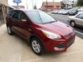 2014 Sunset Ford Escape SE 1.6L EcoBoost 4WD  photo #3