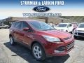 2014 Sunset Ford Escape SE 1.6L EcoBoost 4WD  photo #1