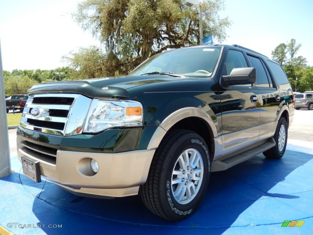 2014 green gem ford expedition xlt 93245726 gtcarlot. Black Bedroom Furniture Sets. Home Design Ideas