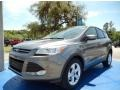 Sterling Gray 2014 Ford Escape Gallery