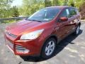 2014 Sunset Ford Escape SE 2.0L EcoBoost 4WD  photo #5