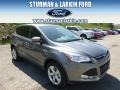 2014 Sterling Gray Ford Escape SE 2.0L EcoBoost 4WD  photo #1