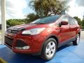 2014 Sunset Ford Escape SE 1.6L EcoBoost  photo #1