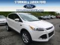 2014 White Platinum Ford Escape Titanium 2.0L EcoBoost 4WD  photo #1