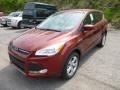 2014 Sunset Ford Escape SE 1.6L EcoBoost 4WD  photo #5