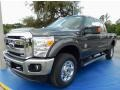 Magnetic 2015 Ford F350 Super Duty Gallery