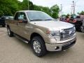 Pale Adobe 2014 Ford F150 Gallery