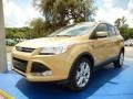 2014 Karat Gold Ford Escape Titanium 1.6L EcoBoost  photo #1