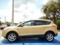 2014 Karat Gold Ford Escape Titanium 1.6L EcoBoost  photo #2