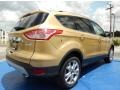 2014 Karat Gold Ford Escape Titanium 1.6L EcoBoost  photo #3