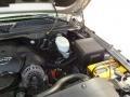 Silver Birch Metallic - Silverado 1500 SS Extended Cab 4x4 Photo No. 29