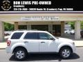 2010 White Suede Ford Escape XLT V6 4WD #93983575