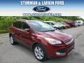 2014 Sunset Ford Escape Titanium 1.6L EcoBoost 4WD  photo #1