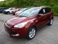 2014 Sunset Ford Escape Titanium 1.6L EcoBoost 4WD  photo #5