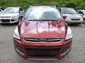 2014 Sunset Ford Escape Titanium 1.6L EcoBoost 4WD  photo #6