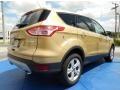 2014 Karat Gold Ford Escape SE 1.6L EcoBoost  photo #3