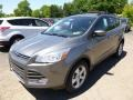 2014 Sterling Gray Ford Escape SE 2.0L EcoBoost  photo #5