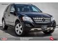 Black 2009 Mercedes-Benz ML 350 4Matic