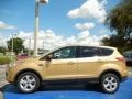2014 Karat Gold Ford Escape SE 1.6L EcoBoost  photo #2