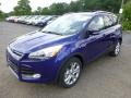 2014 Deep Impact Blue Ford Escape Titanium 2.0L EcoBoost 4WD  photo #5