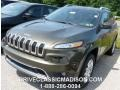 ECO Green Pearl 2014 Jeep Cherokee Gallery