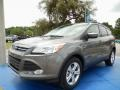 2014 Sterling Gray Ford Escape SE 2.0L EcoBoost  photo #1