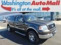 Dark Stone Metallic 2005 Ford F150 XLT Regular Cab 4x4