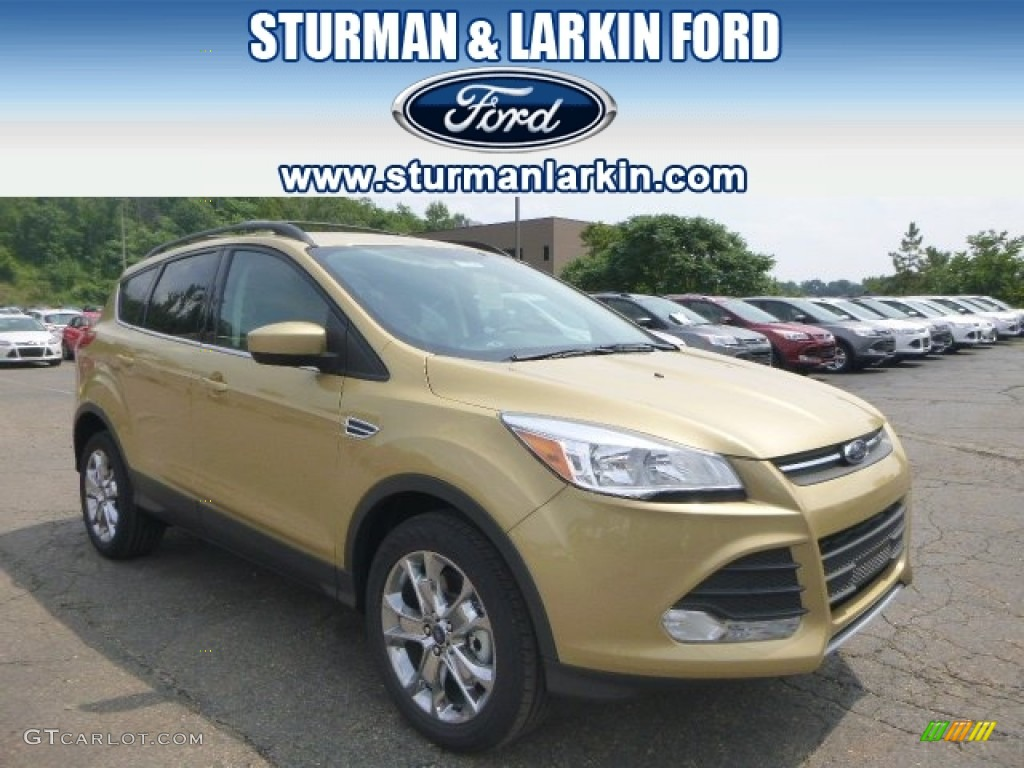2014 Escape SE 2.0L EcoBoost 4WD - Karat Gold / Medium Light Stone photo #1
