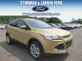 2014 Karat Gold Ford Escape SE 2.0L EcoBoost 4WD  photo #1