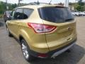 2014 Karat Gold Ford Escape SE 2.0L EcoBoost 4WD  photo #3