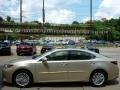 Satin Cashmere Metallic 2013 Lexus ES 350
