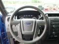 Blue Flame - F150 STX Regular Cab 4x4 Photo No. 19