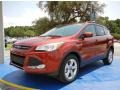 2014 Sunset Ford Escape SE 2.0L EcoBoost  photo #1