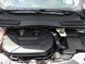 2014 White Platinum Ford Escape SE 2.0L EcoBoost  photo #11