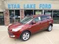 2014 Sunset Ford Escape SE 1.6L EcoBoost 4WD  photo #1