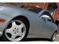 Brilliant Silver Metallic - CL 500 Photo No. 13