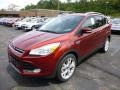 2014 Sunset Ford Escape Titanium 1.6L EcoBoost 4WD  photo #5