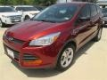 2014 Sunset Ford Escape S  photo #28