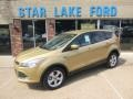 2014 Karat Gold Ford Escape SE 1.6L EcoBoost 4WD  photo #1