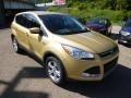 2014 Karat Gold Ford Escape SE 1.6L EcoBoost 4WD  photo #2